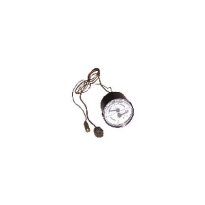 Termomanometro - DIFF per ELM Leblanc : 87167577230